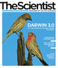 The Scientist January 2010 Cover