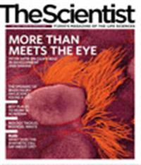 The Scientist July 2010 Cover