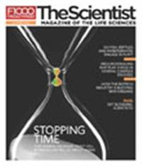 The Scientist October 2010 Cover