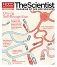 The Scientist November 2010 Cover
