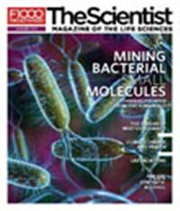 The Scientist January 2011 Cover