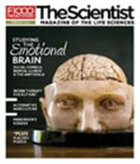 The Scientist February 2011 Cover