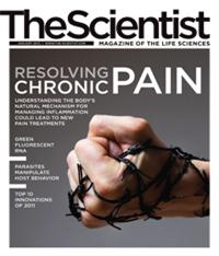 The Scientist January 2012 Cover
