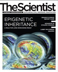 The Scientist October 2012 Cover