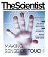 The Scientist September 2012 Cover