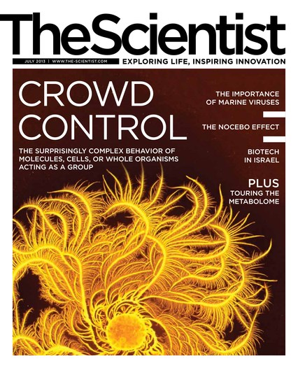 The Scientist July 2013 Cover