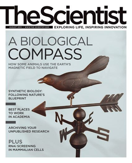 The Scientist August 2013 Cover