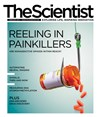 The Scientist February 2014 Cover