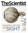 The Scientist October 2014 Cover