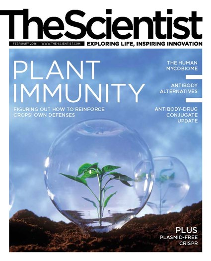 The Scientist February 2016 Cover
