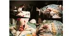 BIOTEKNICA: Public Autopsy Performance, 2005