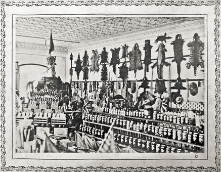 Amazonian stand in the international Fair Exposition of Brussels in 1911.