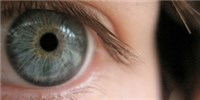 image: Eye Trials Give Hope for Stem Cells