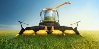 image: Better Biofuel Crops