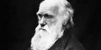 image: Charles Darwin for Congress