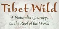 image: Book Excerpt from Tibet Wild