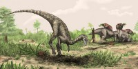 image: Evidence for Earliest Dino?