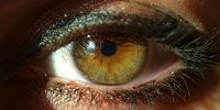 image: Detailing Color Vision