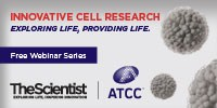 image: Innovative Cell Research