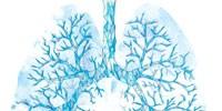 image: Icing Organs