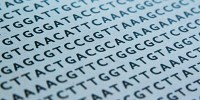 image: Genetic Privacy for Suspects?
