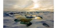image: Sampling the New Arctic