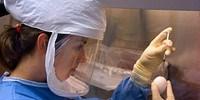 image: Regulating Dangerous Research