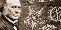 image: Book Excerpt from Louis Agassiz: Creator of American Science
