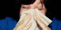 image: Viruses Prefer the Cold