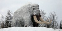 image: Mammoth Blood Gives Hope for Cloning?