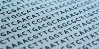 image: Supreme Court OKs DNA Collection on Arrest
