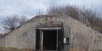 image: Bunker Bats