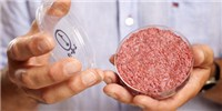 image: Lab-Grown Burger Taste Test