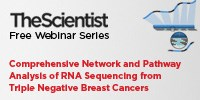 image: Comprehensive Network and Pathway Analysis of RNA Sequencing Data from Triple Negative Breast Cancers