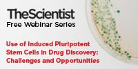 image: Use of Induced Pluripotent Stem Cells in Drug Discovery: Challenges and Opportunities