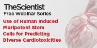 image: Use of Human Induced Pluripotent Stem Cells for Predicting Diverse Cardiotoxicities