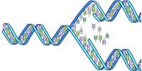 image: $1,000 Genome at Last?