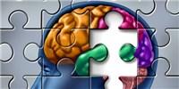 image: Pesticide Linked to Alzheimer's