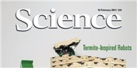 image: New <em>Science</em> Journal to Launch