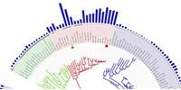 image: Genomenclature?