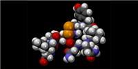 image: Oxytocin Boosts Dishonesty