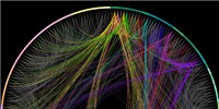 image: Mouse Brain Connections Mapped