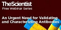 image: An Urgent Need for Validating and Characterizing Antibodies