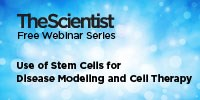 image: Using Stem Cells for Disease Modeling and Cell Therapy