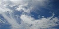 image: Kawasaki Disease a Wind-borne Malady