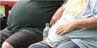 image: The Obesity Burden