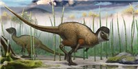 image: Fossil Freshens Views on Dinosaur Feathers