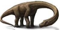 image: Humongous Herbivorous Dinosaur