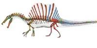 image: Did <em>Spinosaurus </em> Swim?