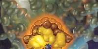 image: Bacteriophage Boom?